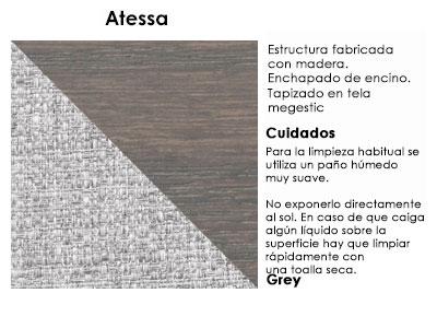 atessa1_gray
